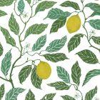 Citrus Ekobomull Grön Veckad gardinkappa