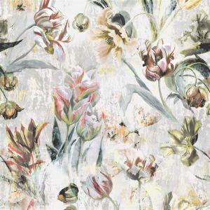 Tulipa Stellata Birch Gardinlängd