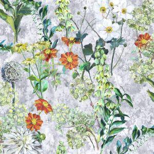 Artemisia Acacia Hissgardin