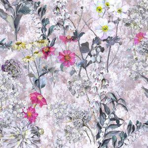 Artemisia Fuchsia Hissgardin