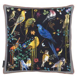 Birds Sinfonia Crepuscule Kudde