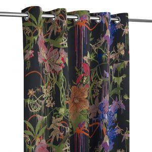 Orchids Fantasia Craft Crepuscule Öljettlängd